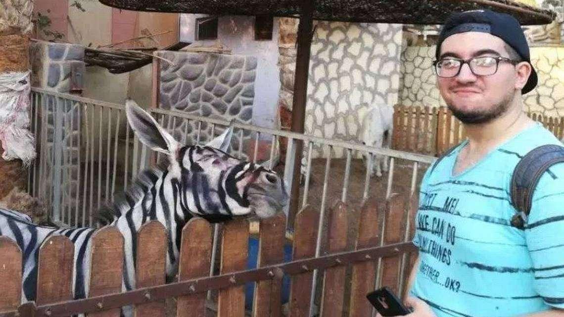 Este año, con el fin de divertir a los niños, los empleados que subcontrata la gestión del zoo, decidieron pintar a los pequeños y también a las dos burras. Foto: Redes Sociales