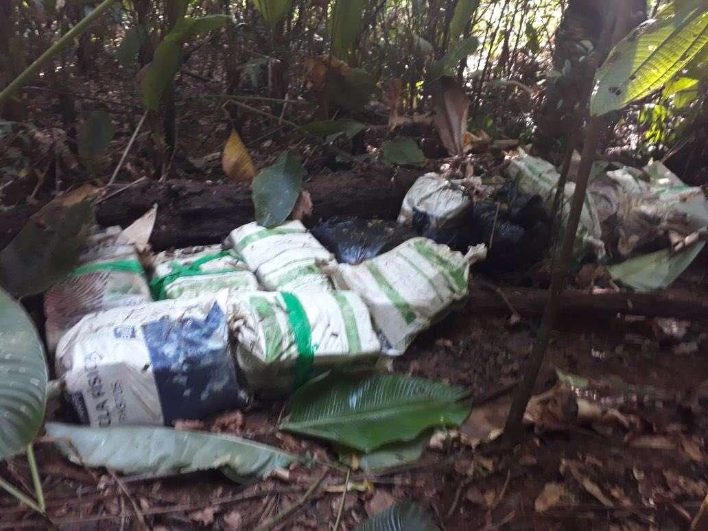 Se espera que en las próximas horas se informe la cantidad de droga que contienen los bultos ubicados en una zona boscosa colonense. Foto: @minsegpanama