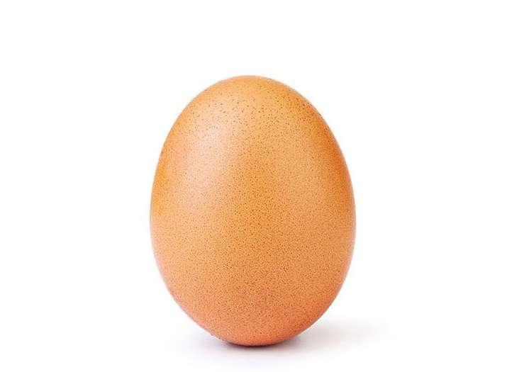 La imagen fue colgada en la cuenta de Instagram: @world_record_egg