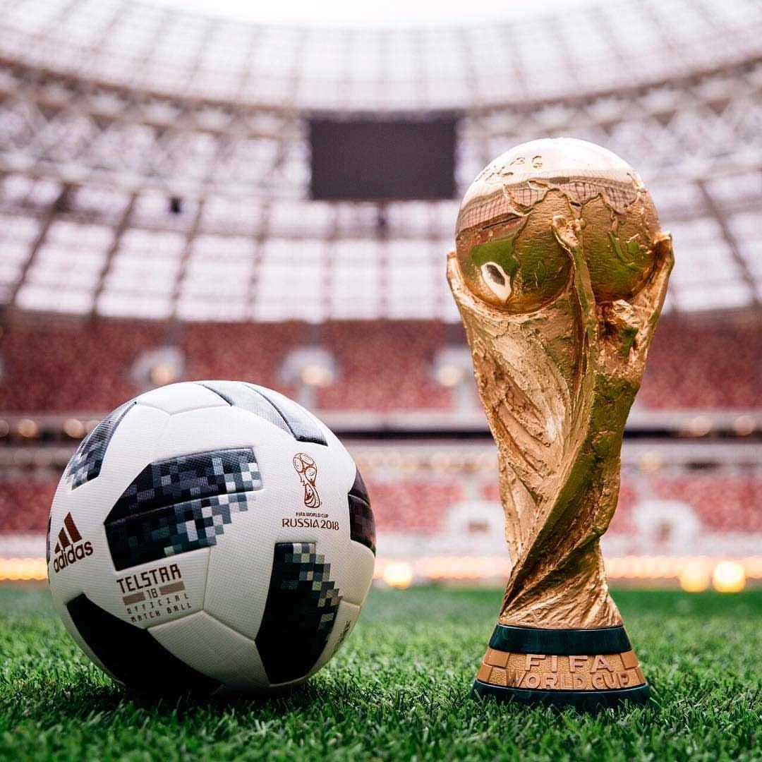 Balón copa del mundo