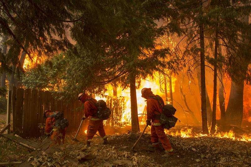 Un grupo de bomberos fue registrado este viernes al combatir un incendio en el condado de Butte (California, EE. UU.). EFE