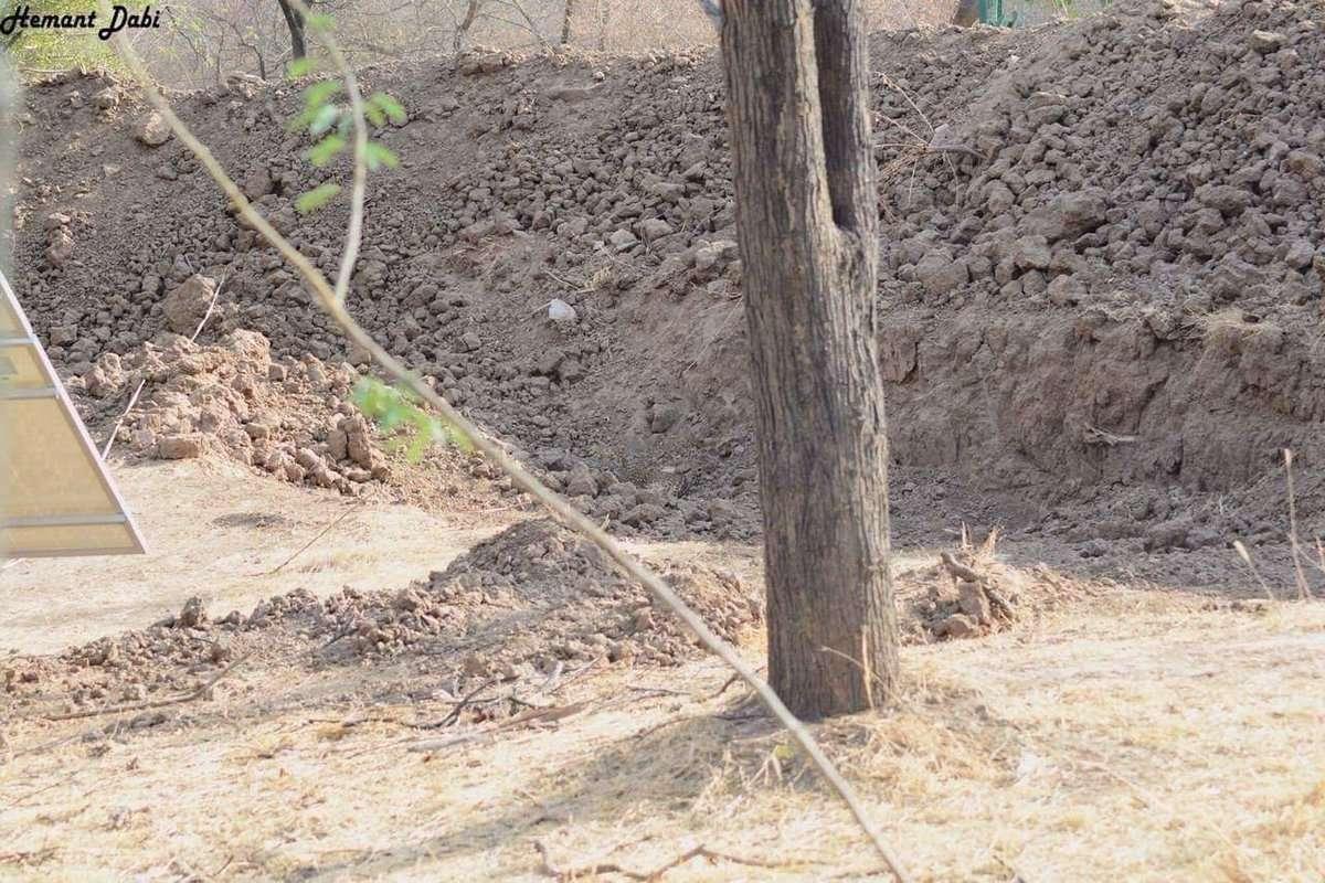 Un leopardo se escondió en una zanja. | Foto: Twitter @BellaLack