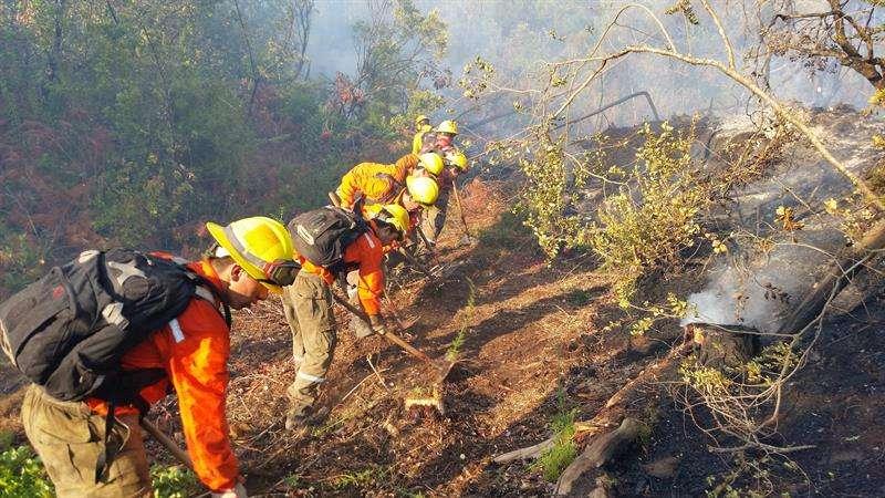 Fotografía cedida este martes por la Corporación Chilena de la Madera (Corma) en la que se registró a una brigada de bomberos al combatir algunos incendios activos en la sureña región de La Araucanía (Chile). EFE