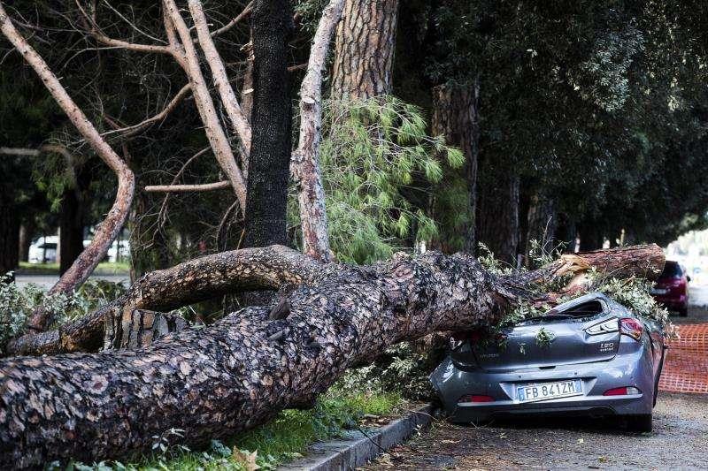 Un vehículo aparcado ha sido destrozado al caer un árbol debido a los fuertes vientos en Roma, Italia, hoy 30 de octubre de 2018. EFE