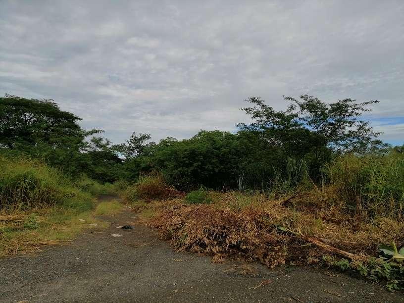 Queda prohibido dentro del distrito arrojar desperdicios de cualquier clase.