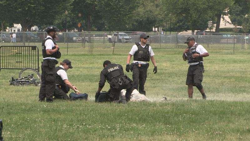 Captura de imagen de la grabación de un vídeo del momento en el que varios miembros del servicio secreto detienen a un hombre que se prendió fuego en el exterior de la Casa Blanca, Washington D.C (Estados Unidos). EFE