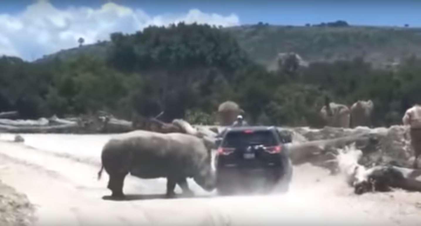 Captura de video. LO MAS CALIENTE DE LOS FAMOSOS